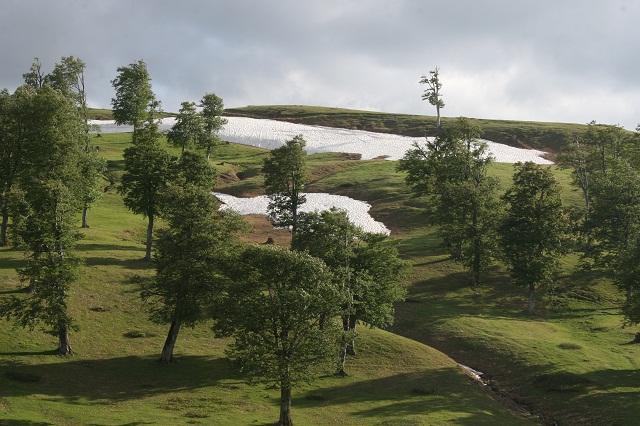 مسیر زیبای کوهستانی در گرجستان